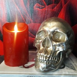 Human SKULL Resin Silver ART Decor Head Halloween